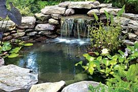 Пруды, водопады